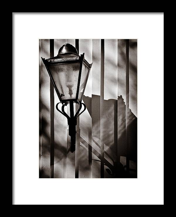 Moth Framed Print featuring the photograph Moth And Lamp by Dave Bowman