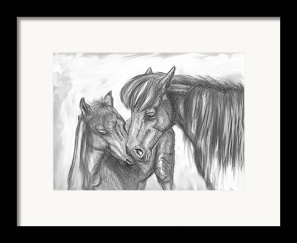Mother Framed Print featuring the drawing Mother And Foal by Crystal Suppes