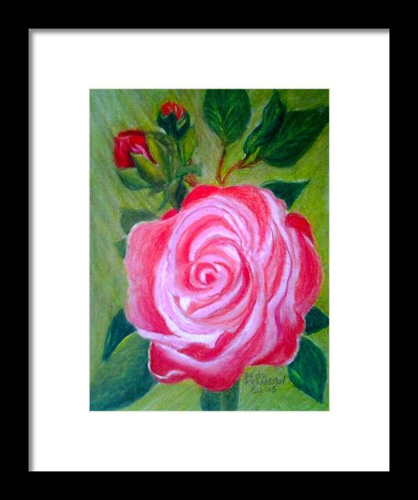 Color Pencil Framed Print featuring the drawing Mothers Day Rose by David Richardson