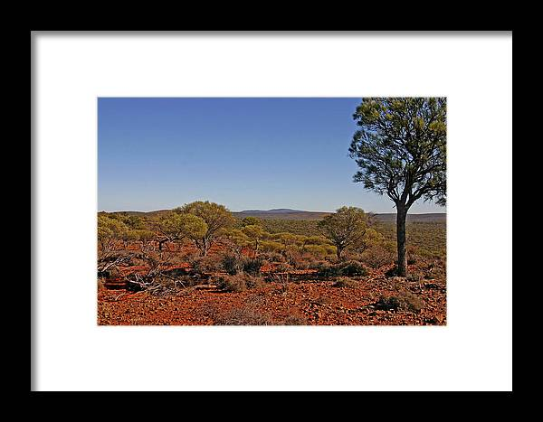 View To Mt Singleton From Homestead Ridge Trail. This Area Of Western Australia Is Rich In Iron Ore Framed Print featuring the photograph Mount Gibson Station Wa by Tony Brown