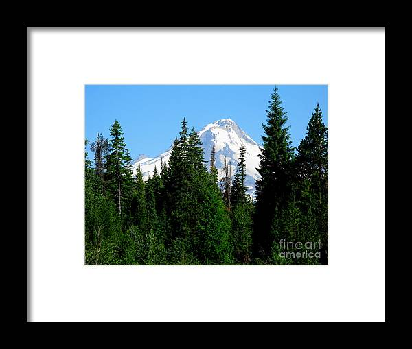 Mt. Hood Framed Print featuring the photograph Mount Hood Majestic by PJ Cloud