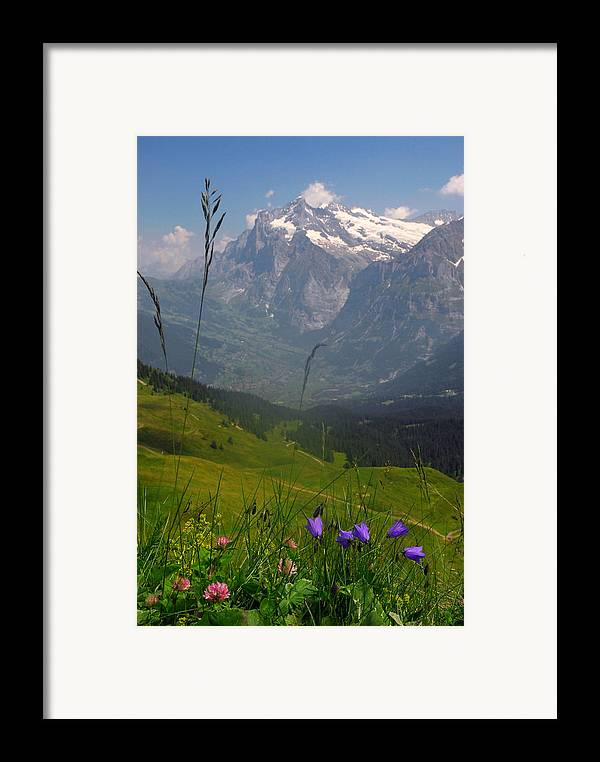 Grindelwald Framed Print featuring the photograph Mount Wetterhorn And The Grindelwald by Anne Keiser