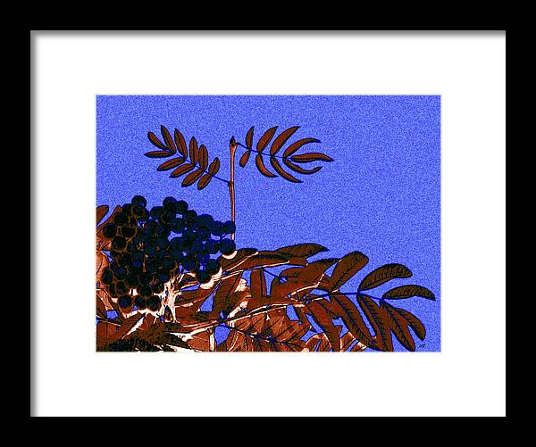 Abstract Framed Print featuring the digital art Mountain Ash Design by Will Borden