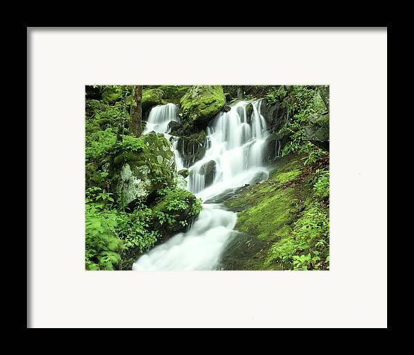 Waterfalls Framed Print featuring the photograph Mountain Falls by Marty Koch