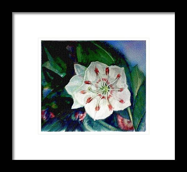 Art Framed Print featuring the painting Mountain Laurel Blossom Closeup by Elle Smith Fagan