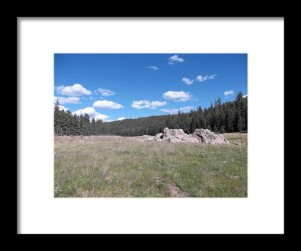 Framed Print featuring the photograph Mountain Meadow Above Cuba,nm by Curtis Willis