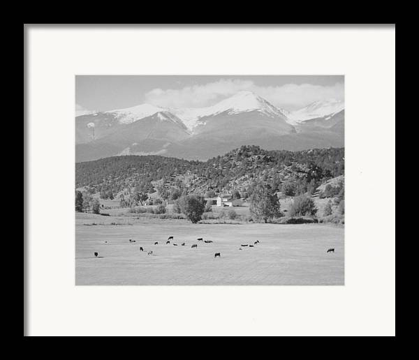 Landscape Framed Print featuring the photograph Mountain Meadow by Allan McConnell