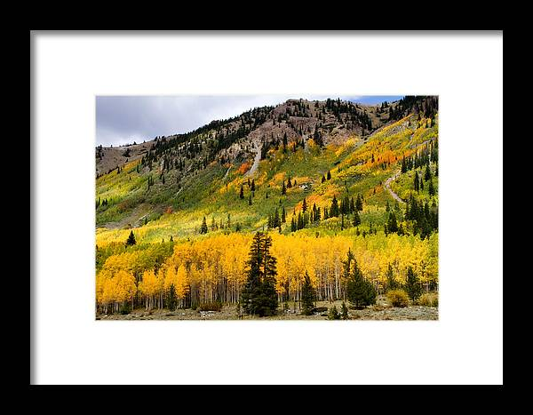 Aspen Framed Print featuring the photograph Mountain Side Autumn by Lana Trussell