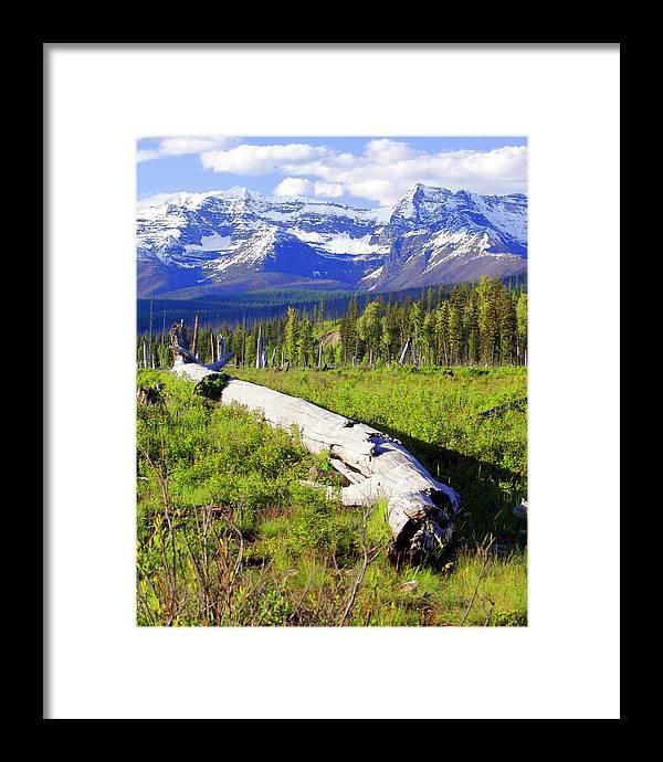 Mountain Framed Print featuring the photograph Mountain Splendor by Marty Koch