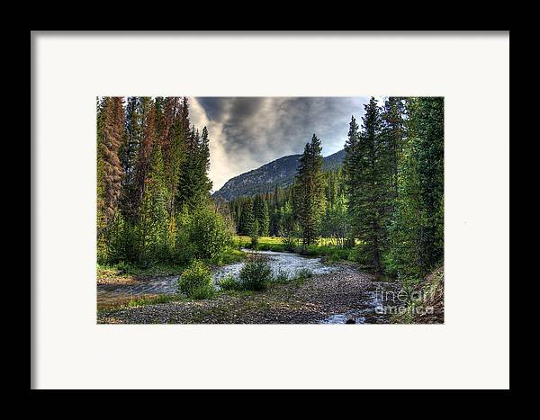 Landscape Framed Print featuring the photograph Mountain Stream 4 by Pete Hellmann