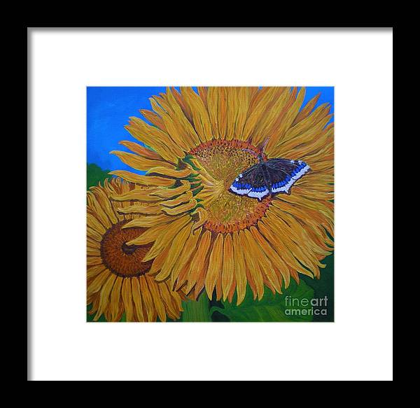 Oil On Linen Canvas Framed Print featuring the painting Mourning Cloak's Sunflowers by Teresa Marie Staal Cowley