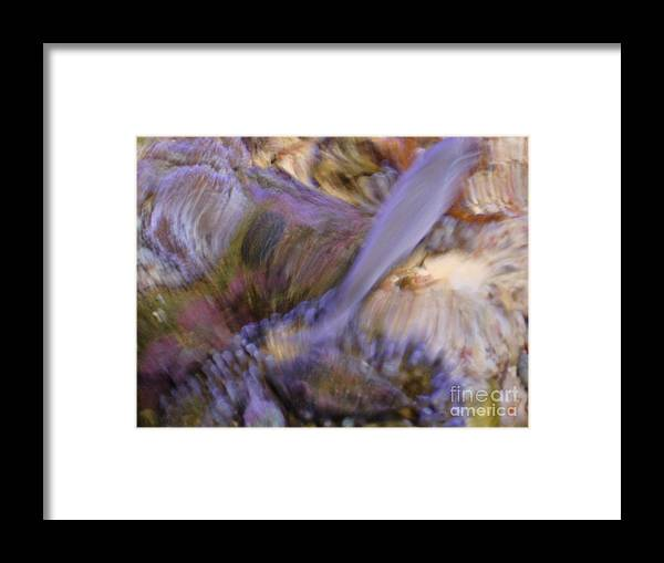 Fish Framed Print featuring the photograph Movement by PJ Cloud