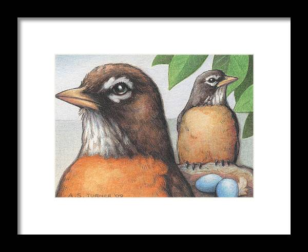 Birds Framed Print featuring the drawing Mr And Mrs Robin Are Expecting by Amy S Turner