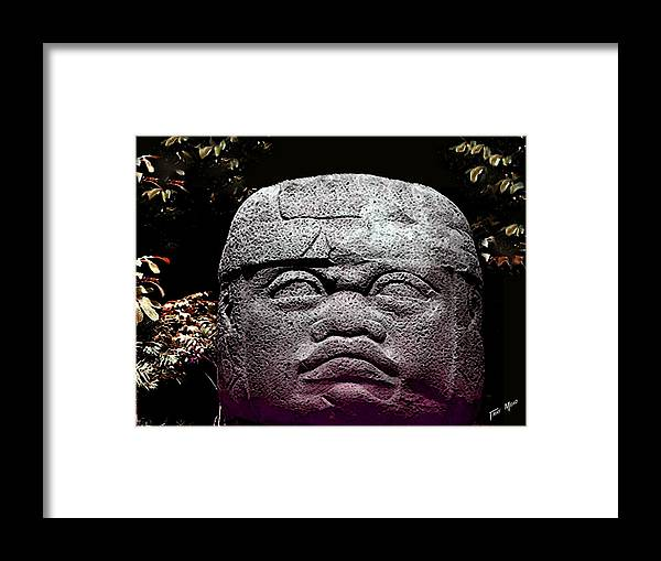 Aztec Framed Print featuring the photograph Mr Stone Head by Tray Mead