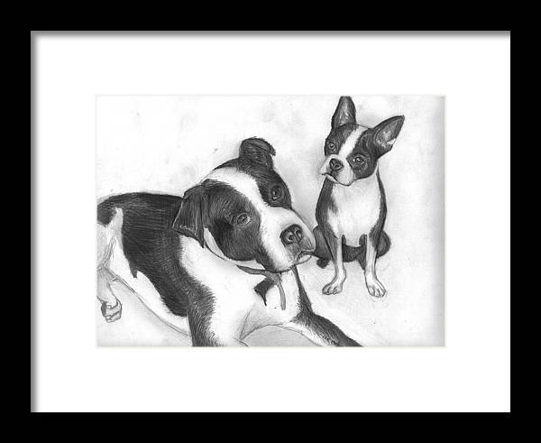 Dog Framed Print featuring the drawing Ms Proutys Dogs by Katie Alfonsi