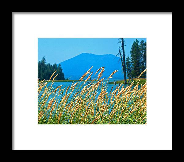 Nature Framed Print featuring the photograph Mt. Bachelor by Dorota Nowak