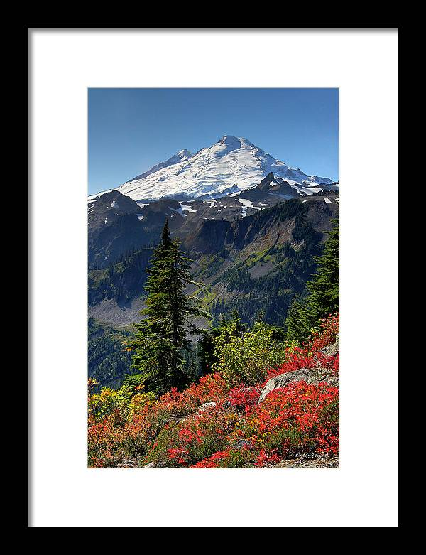 Mountain Framed Print featuring the photograph Mt. Baker Autumn by Winston Rockwell
