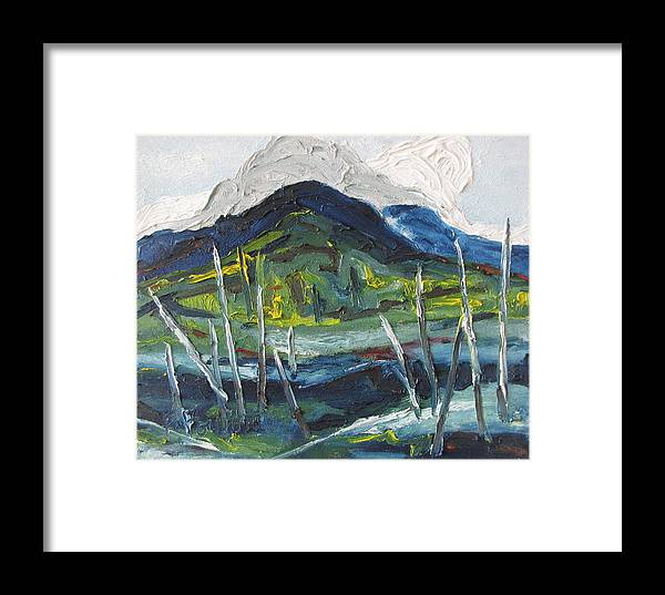 Fournier Framed Print featuring the painting Mt Gosford by Francois Fournier