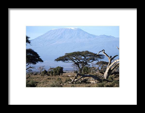 Worsley Framed Print featuring the photograph Mt.kilimanjaro by Wade Worsley