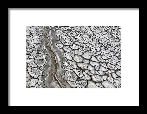 Mud Framed Print featuring the photograph Mud by Gabriela Insuratelu