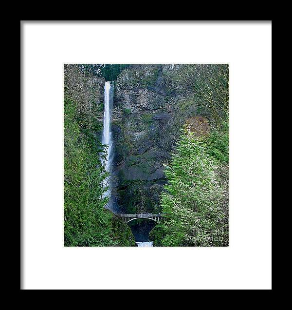 Waterfall Framed Print featuring the photograph Multnomah Falls by PJ Cloud