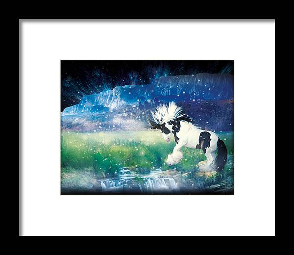 Horse Framed Print featuring the photograph Murphy's Dance by Jamie Mammano