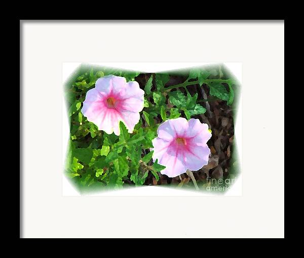 Muted Framed Print featuring the photograph Muted Colors by Judy Waller