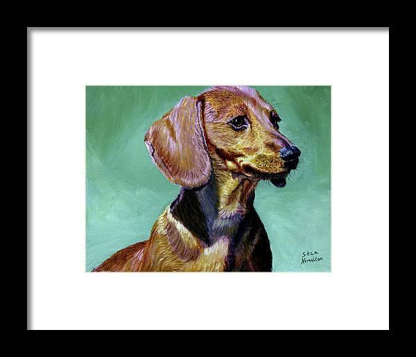 Daschund Framed Print featuring the painting My Daschund by Stan Hamilton