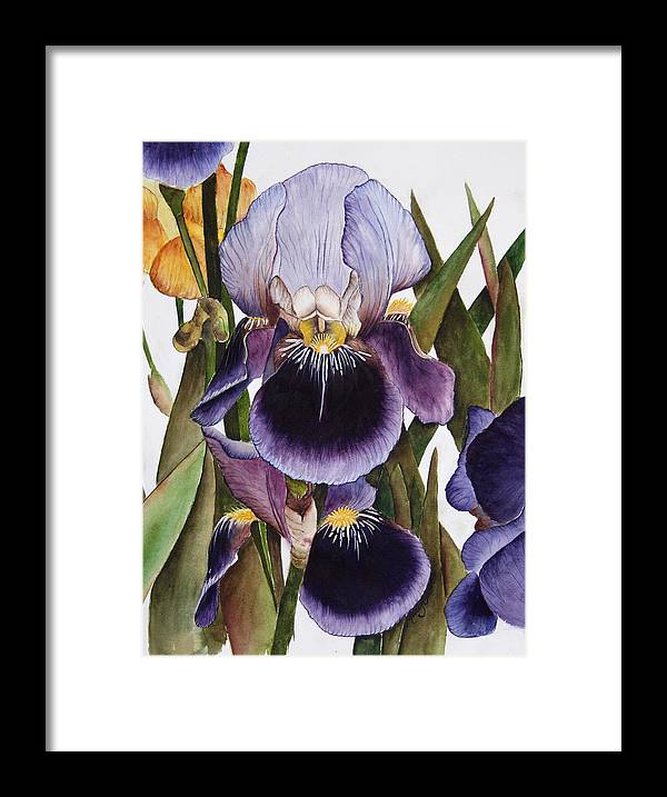 Iris Framed Print featuring the painting My Iris Garden by Mary Gaines
