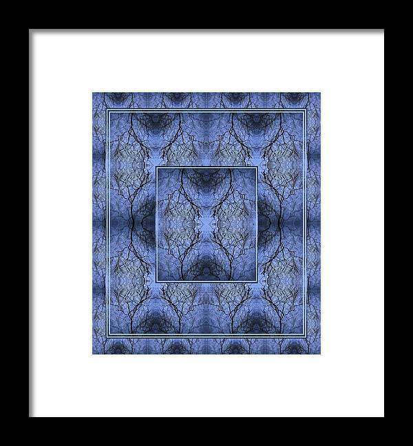 Mystery Blue Framed Print featuring the photograph Mystery Blue by Joy Nichols