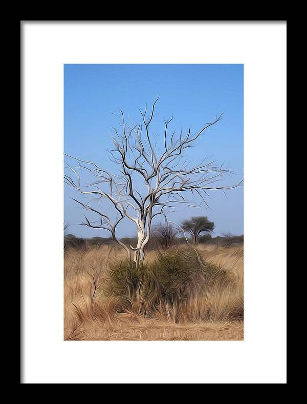 Bushveld Framed Print featuring the digital art Mystic Buishveld Tree by Dave Harcourt