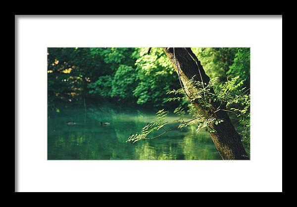 Framed Print featuring the photograph N001 Impression 8k by Relaxdaily