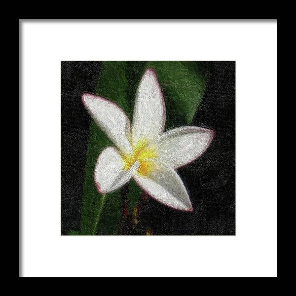 Flowers Framed Print featuring the photograph Na-17 by Michael Fencik
