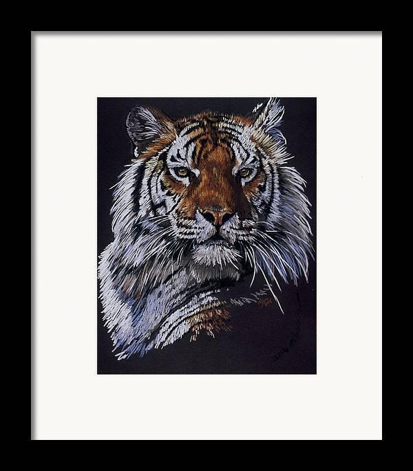 Tiger Framed Print featuring the drawing Nakita by Barbara Keith