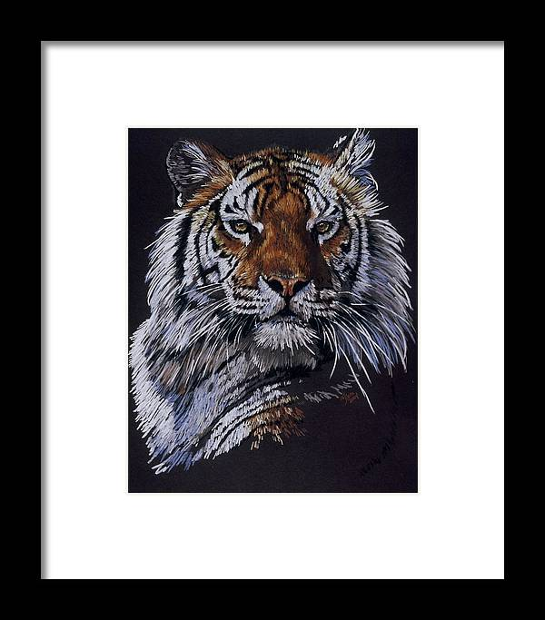 Tiger Framed Print featuring the drawing Nakita by Barbara Keith