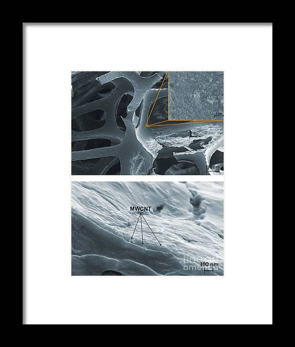 Science Framed Print featuring the photograph Nanotubes, Flame-resistant Coating, Sem by Kim/NIST