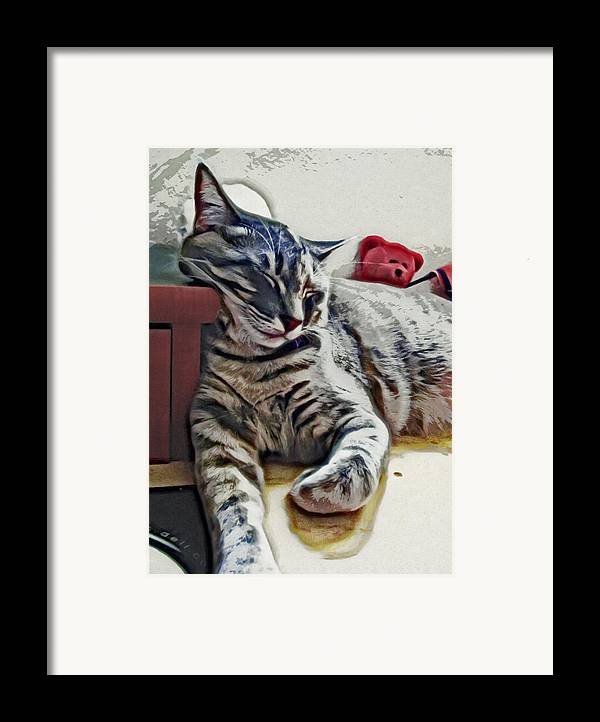Cat Framed Print featuring the photograph Nap Number Ten by David G Paul