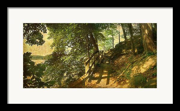 Road Forest Park Lake Trees Path Framed Print featuring the photograph Narrow Road by Inesa Kayuta