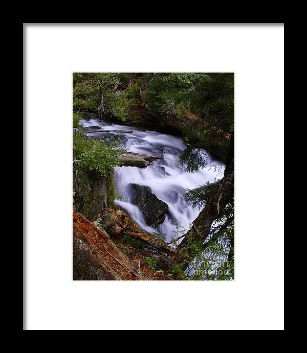 Waterfall Framed Print featuring the photograph National Creek Falls 03 by Peter Piatt