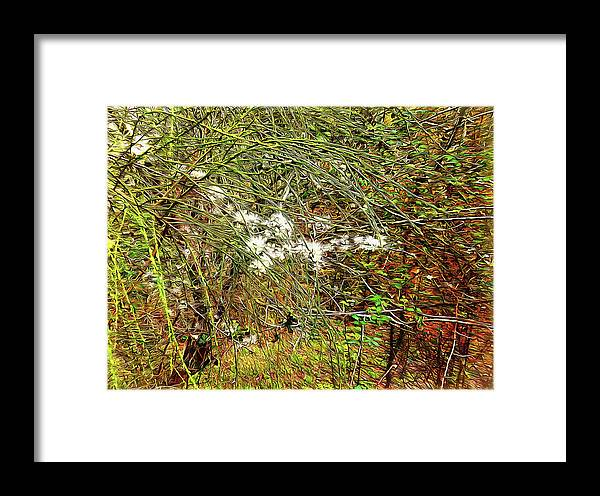 Blossom Framed Print featuring the digital art Natural Abstract by Dorothy Berry-Lound