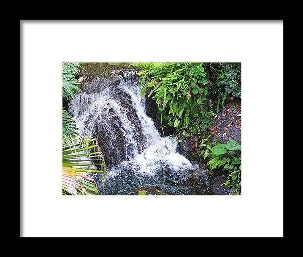 Water Framed Print featuring the photograph Natural Beauty by Rana Adamchick