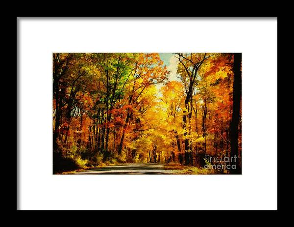 Trees Framed Print featuring the photograph Natural Cathedral by Lois Bryan