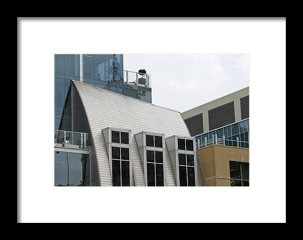 Architecture Framed Print featuring the photograph Natural Collage by Gary Everson