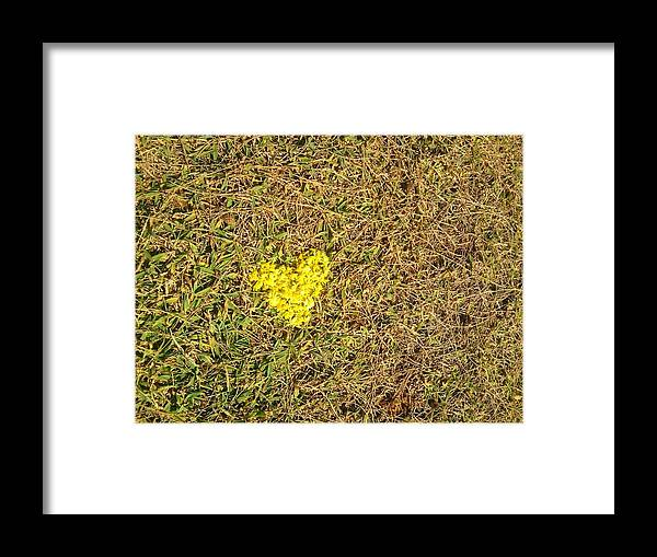 Love Framed Print featuring the photograph Nature Lover by Charles Jennison
