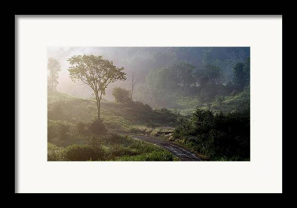 Landscape Framed Print featuring the photograph Nature by Robert Ruscansky