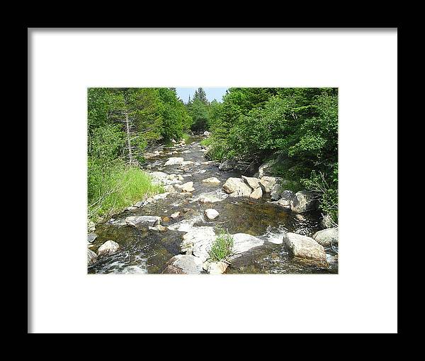 Nature Framed Print featuring the photograph Natures Beauty by Allison Prior