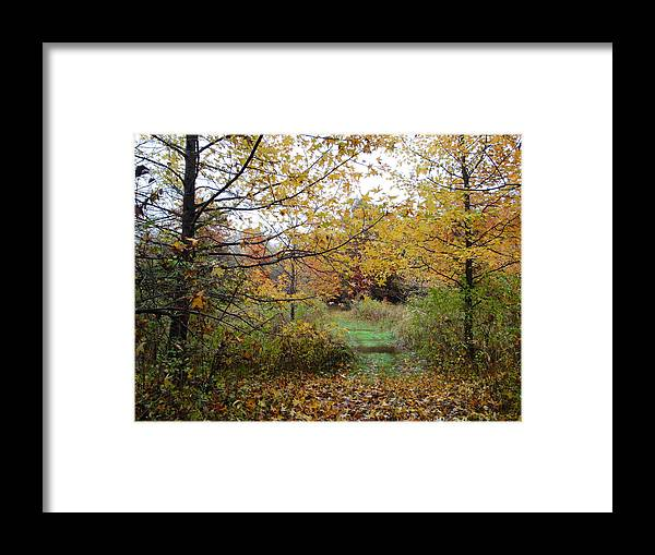 Autumn Landscape Framed Print featuring the photograph Nature's Expression-12 by Leonard Holland