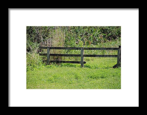 Fence Framed Print featuring the photograph Natures Fence by Rob Hans