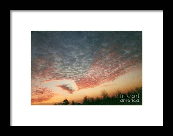 Landscape Framed Print featuring the photograph Natures Palette by Stephen King