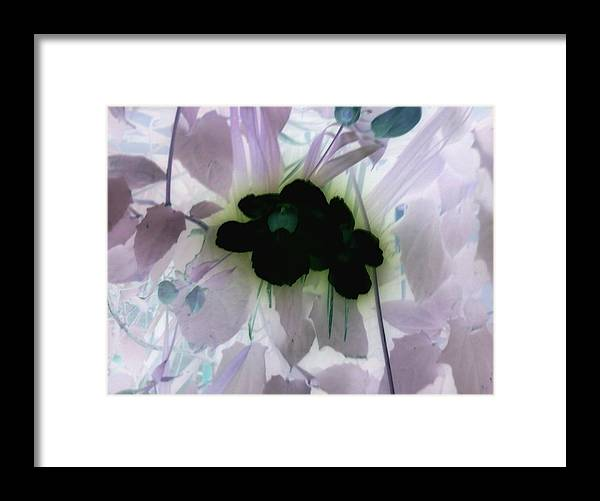 Negative Framed Print featuring the photograph Negative by Robert Cunningham